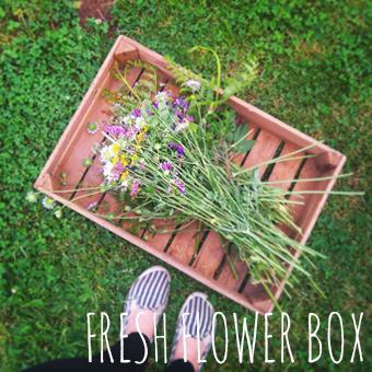 fresh_flower_galerie